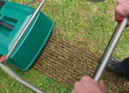 Pourquoi et comment scarifier sa pelouse ?